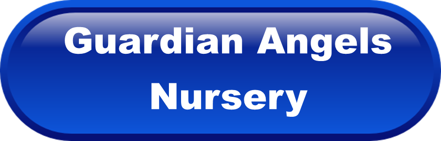 Guardian Angels BUTTON