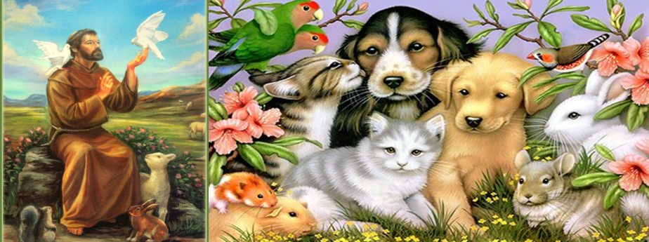 Pet Blessing in honor of St. Francis – Saturday, October 1st 9:30 AM