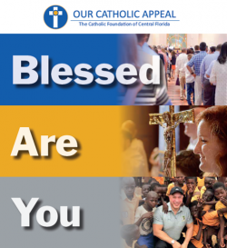 Our Catholic Appeal 2019 - We are off to a great start- Thank you for your support!